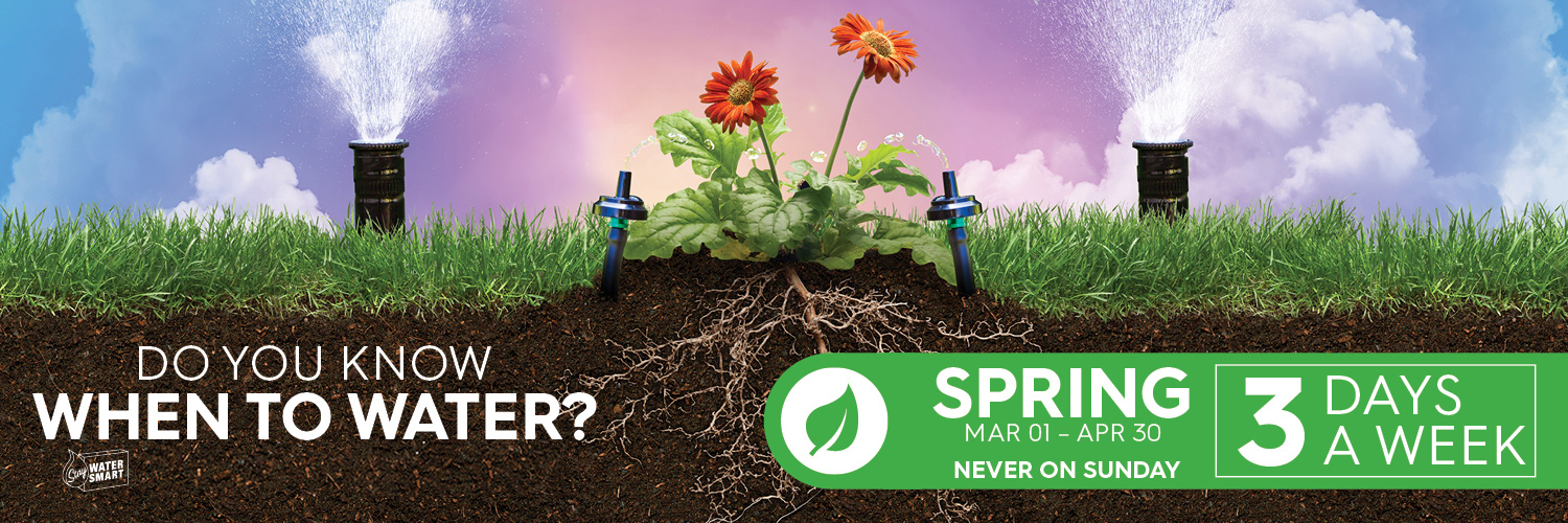 Sprinklers with flowers and grass with text overlay that reads Water 3 days a week March 1 through April 30.